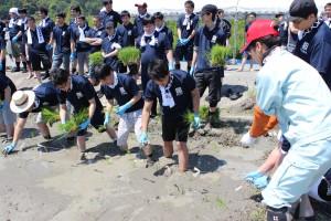 阪神米穀株式会社と株式会社くらコーポレーションの田植え体験実施