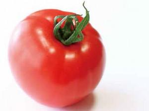 トマト・忍美蕃茄(しのびとまと)