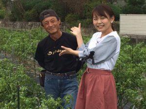 【放送予告】杉谷の伝統野菜がKBS京都で紹介されます♪