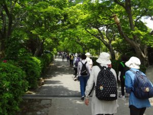 サンシャイン倶楽部で日吉大社周辺を散策