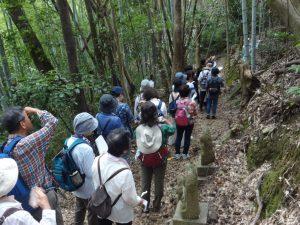 健康ウォーキング開催 和歌山の熊野古道を散策